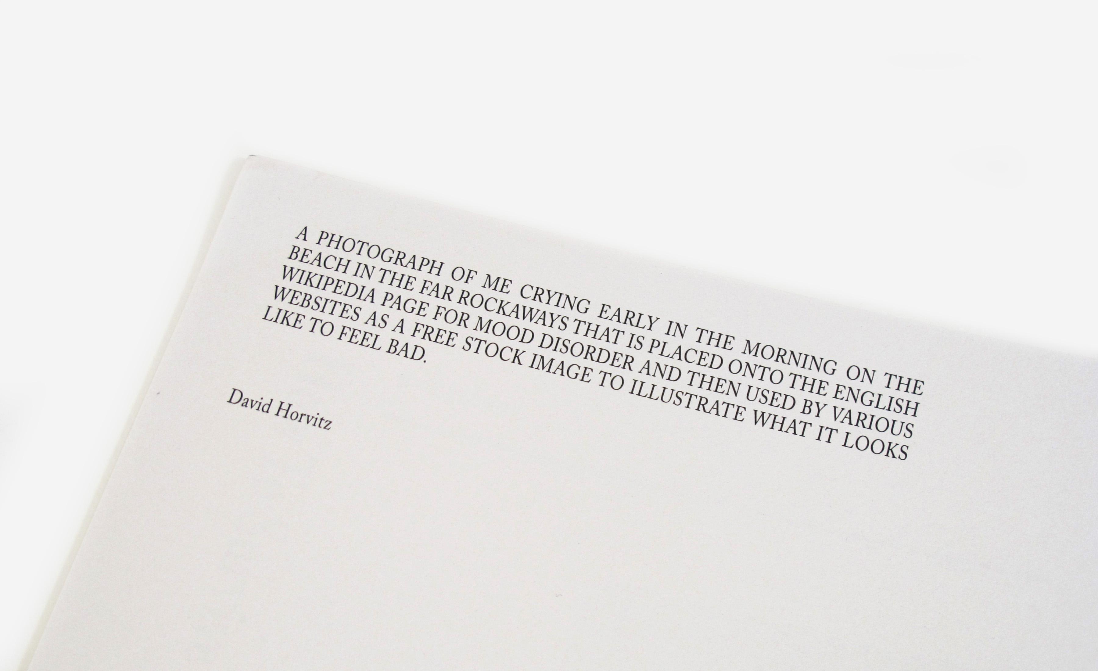David Horvitz Mood Disorder Shelter Press