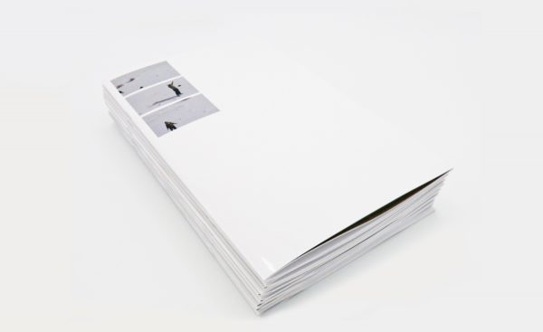 Felicia Atkinson new book 'Ambient Park' out on Shelter Press & Perimeter Editions