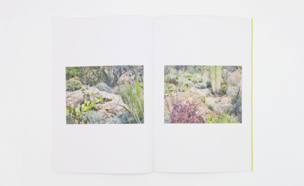 Felicia Atkinson new book 'Ambient Park' out on Shelter Press & Perimeter Editions design Bartolome Sanson