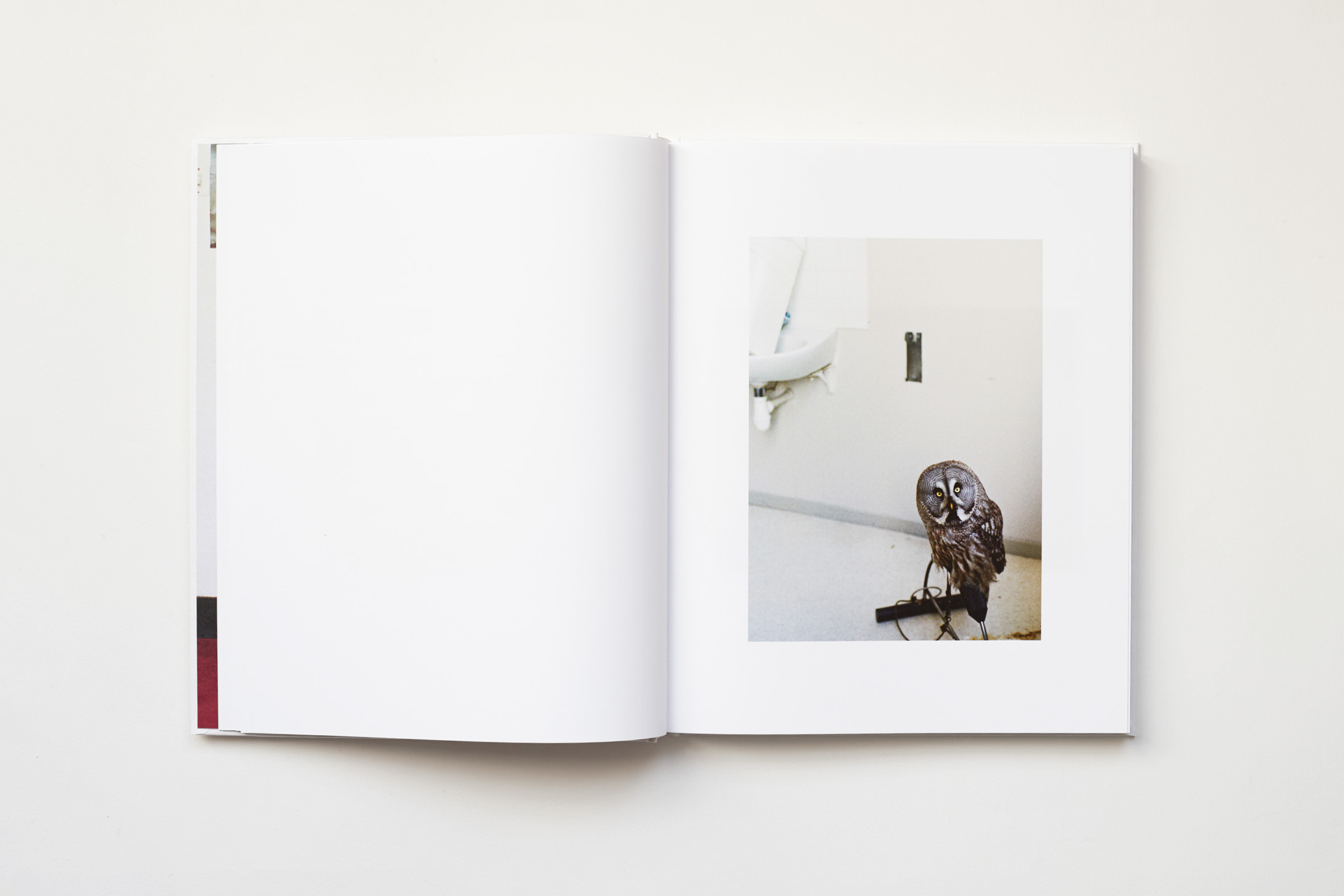 Estelle Hanania Gisele Vienne Shelter Press